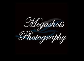 Megs Burgess