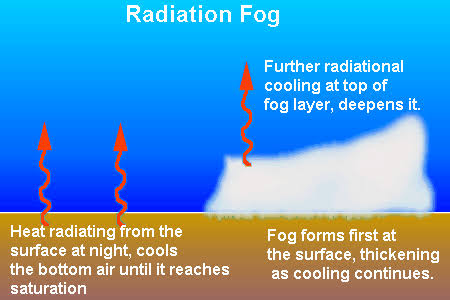 Radiation Fog