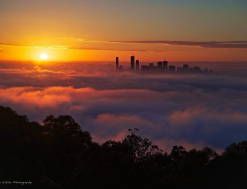 Fog Formations in South-East QLD & What causes them