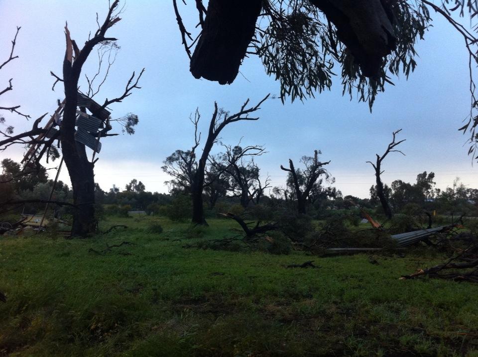 Tornado damage in Wilmington via Julie Marr