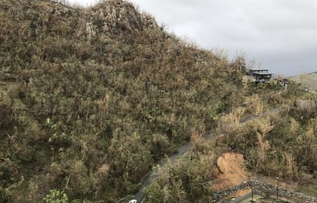 Entire hills stripped of trees down to the trunk following 263km/h winds on Hamilton Island via Brett Evans