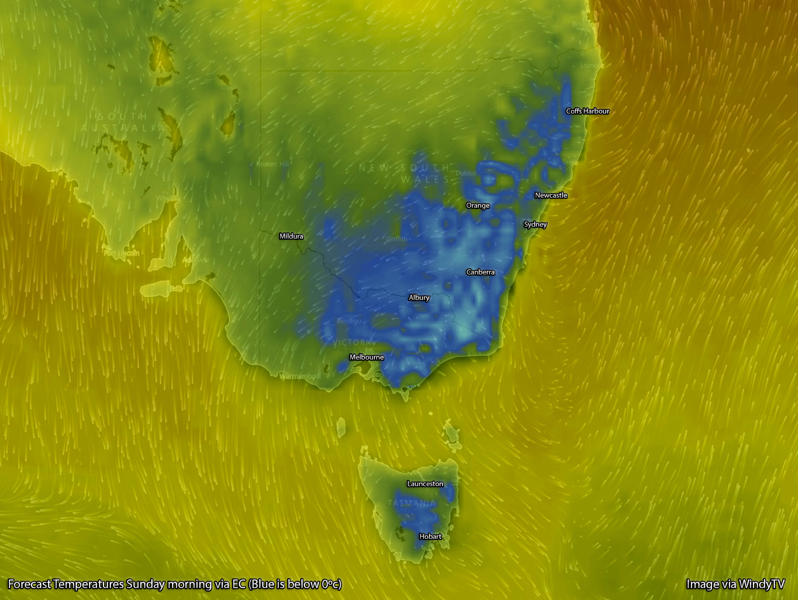 Forecast temperatures for Sunday Morning via EC / WindyTV - Blue colouring is below 0ºc, aqua is below -5ºc