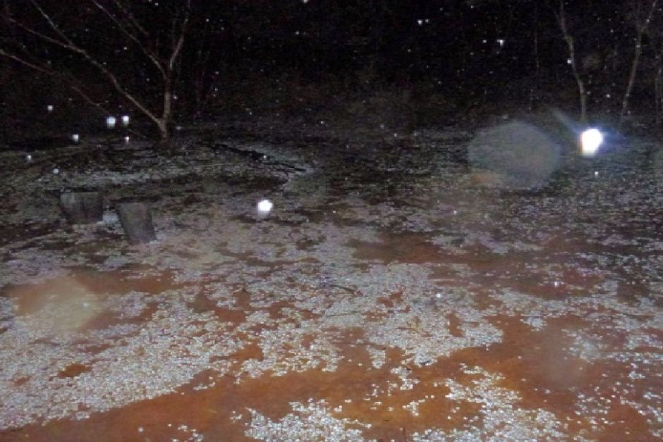 Hail West of Coolgardie, Northern NSW via ABC News