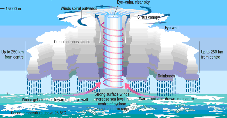 Illustration of how tropical cyclone form
