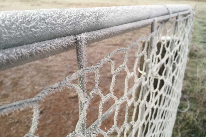 Frozen fence in Canberra, June 2015 via Stephanie Horne